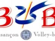 Logo bvb retaillee