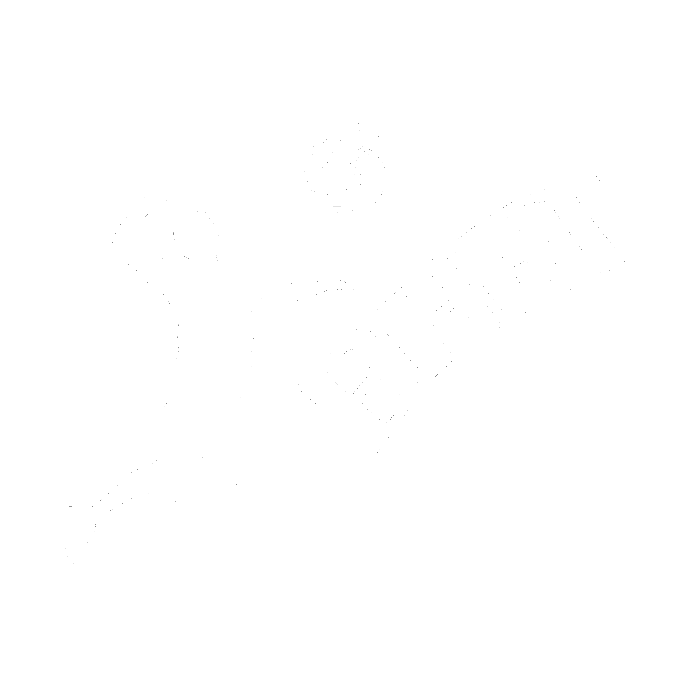 Volley-Club de Bart